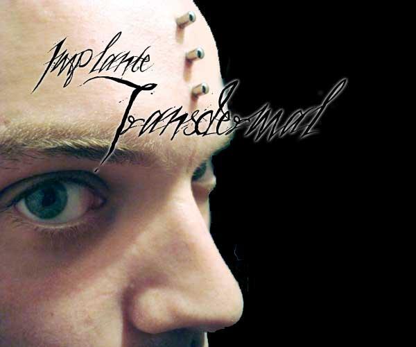 Uma das modificações corporais que mais me encanta é o implante transdermal. Talvez pelas possibilidades quase lúdicas e estética pós humana. A idéia de ter pontos de metais saindo do […]