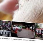 <!--:pt-->Encontro Nacional de Direitos Animais 2012<!--:-->